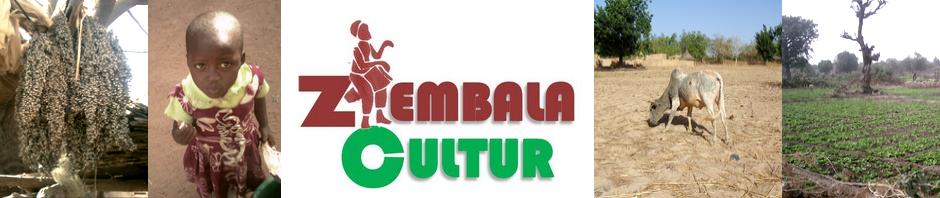 ZEMBALACULTUR | la Sauvegarde, la Promotion du Patrimoine Culturel & la Défense du secteur des arts. Burkina Faso